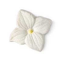 Jasmine Cream